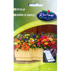 Seminte amestec flori pentru balcon pe banda