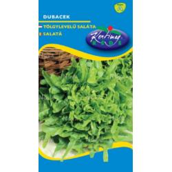 Salata tip frunze de setajr dubacek