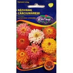 Carciumarese cu flori cactus mix
