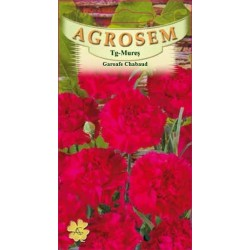 seminte garoafe chabaud rosii