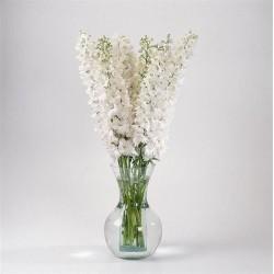 Seminte Delphinium elatum Guardian F1 White