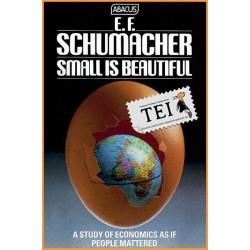 05 - Mic inseamna frumos - Economie cu chip uman - EF Schumacher - TEI