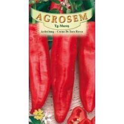 Ardei lung seminte - Capsicum annuum Corno di Toro Rosso
