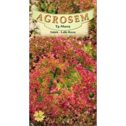 Salata creata rosie seminte - Lollo Rossa