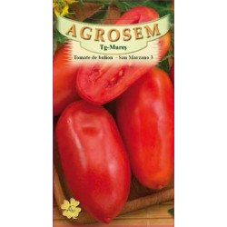 Tomate de bulion seminte - San Marzano 3