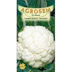 Conopida seminte - Brassica oleracea var. botrytis 'Snowball'