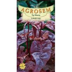 Loboda rosie seminte - Atriplex hortensis f. rubra