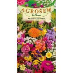 Amestec flori anuale seminte