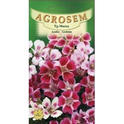 Azalee seminte - Godetia grandiflora
