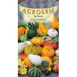 Dovlecel ornamental seminte - Cucurbita pepo mix