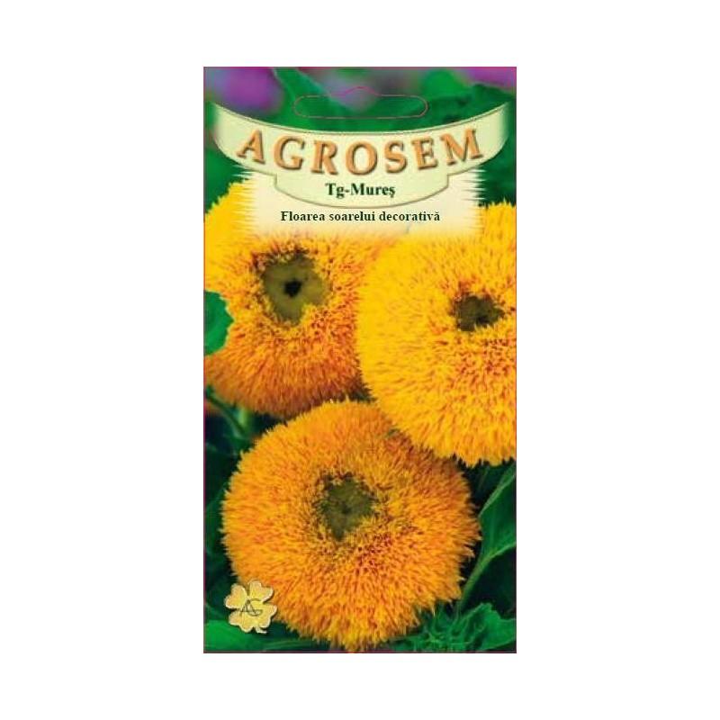 Floarea soarelui decorativa seminte - Helianthus annuus mix