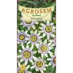 Floarea pasiunii seminte - Passiflora caerulea