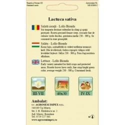 Salata creata seminte - Lollo Bionda