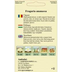 Capsuni seminte - Fragaria ananassa Temptation
