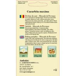 Dovleac de copt seminte - Cucurbita maxima Muscade de Provence