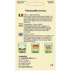 Fetica seminte - Valerianella locusta