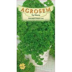 Patrunjel cret seminte - Petroselinum crispum Moss Curled