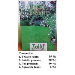 Gazon ornamental seminte Jolly 1kg