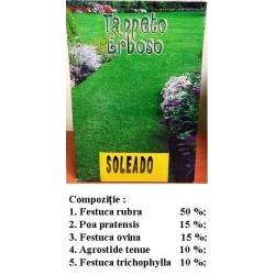 Gazon ornamental seminte Soleado 1kg