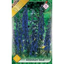 Aconitum blue