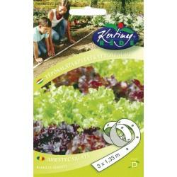 Seminte Salata de frunze - banda