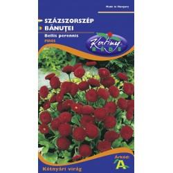 Seminte banutei rosii