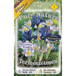Pure Nature - Crocus sieberi Firefly 6 bulbi si Iris reticulata Harmony 8 bulbi - KM