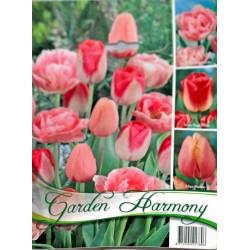 Garden Harmony - Colectie Lalele roz 3x6 - KM