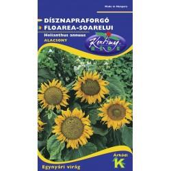 Seminte floarea soarelui mix - KM - Helianthus annuus