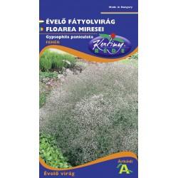 Seminte floarea miresei - KM - Gypsophyla paniculata