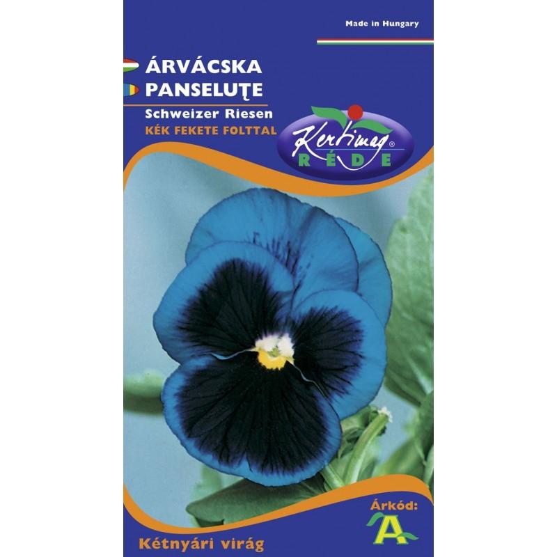 Seminte panselute albastru cu ochi - KM - Viola tricolor
