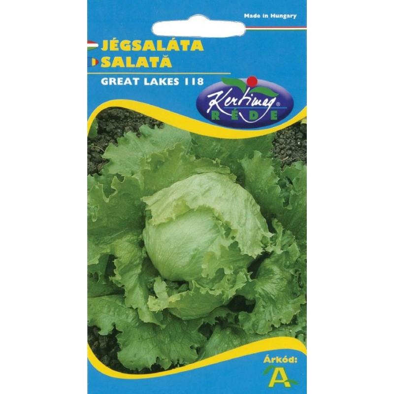 Seminte salata Great Lakes - KM - Lactuca sativa var. capitata