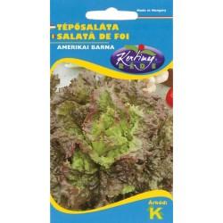 Seminte salata Amerikanischer brauner - KM - Lactuca sativa convar. secalina