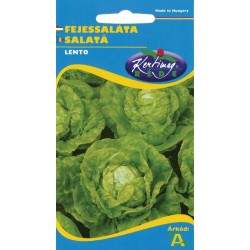 Seminte salata Lento - KM - Lactuca sativa var. capitata