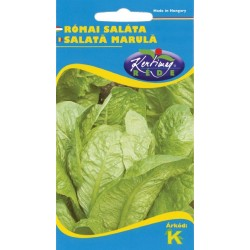Seminte salata marula sau romana - KM - Lactuca sativa var. longifolia