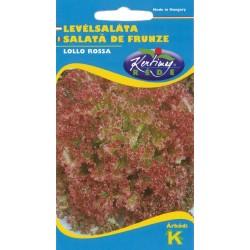 Seminte salata creata Lollo Rossa - KM - Lactuca sativa var. capitata