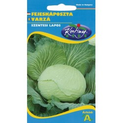Seminte varza Szentesi lapos - KM - Brassica oleracea capitata