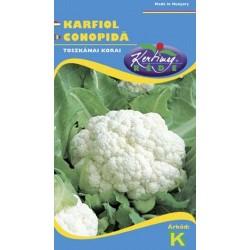 Seminte conopida Toscano precoce 3 - KM - Brassica cretica convar botrytis
