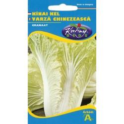 Seminte varza chinezeasca Granaat - KM - Brassica pekinensis
