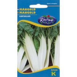 Seminte mangold Lucullus - KM - Beta vulgaris convar. vulgaris provar. flavescens