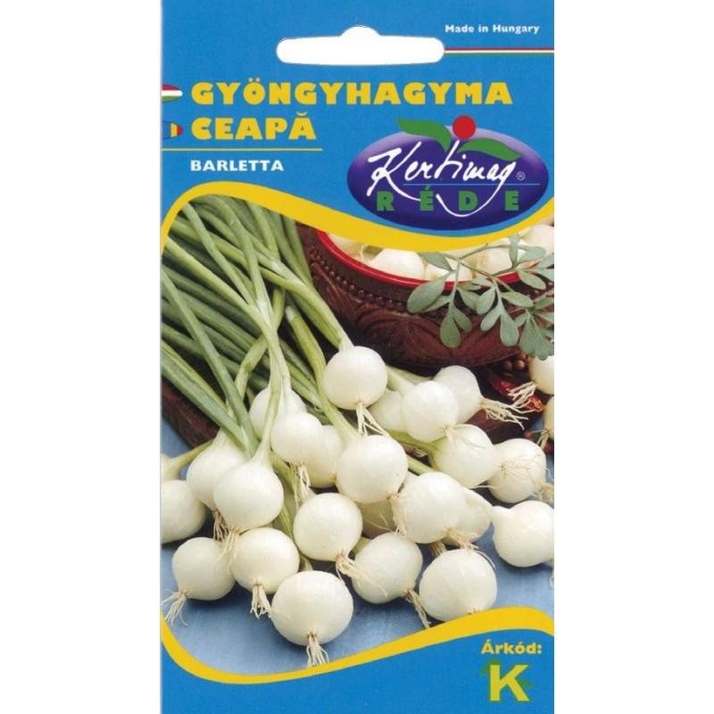 Seminte ceapa(esalota) Barletta - KM - Allium cepa