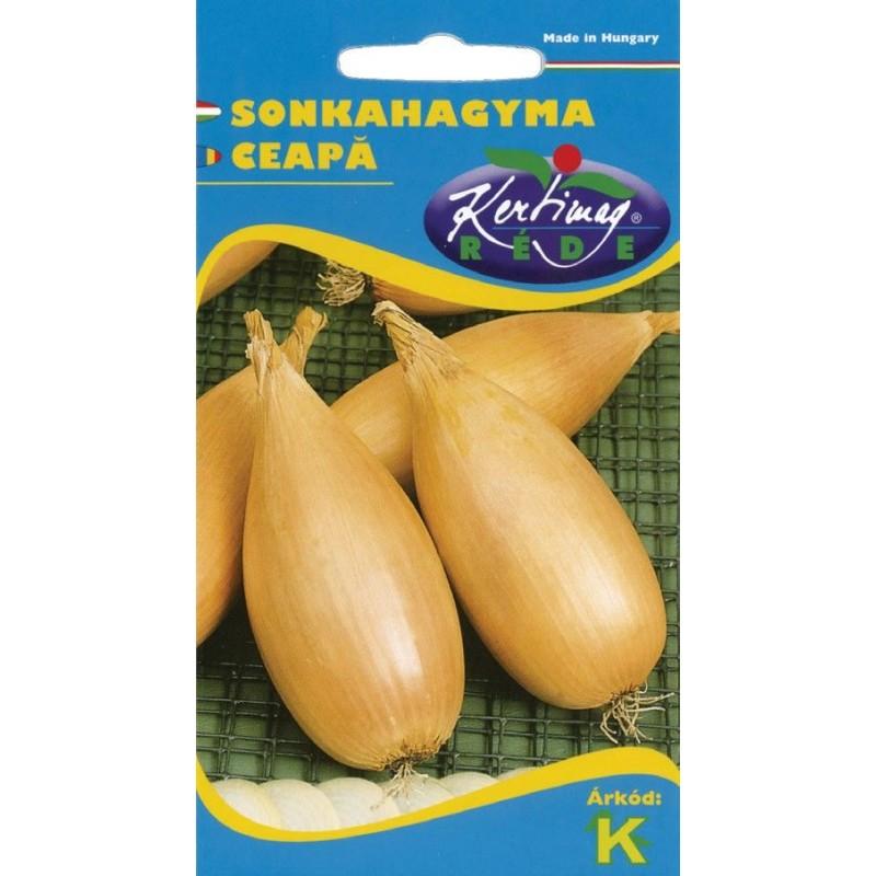 Seminte ceapa de sunca - KM - Allium cepa
