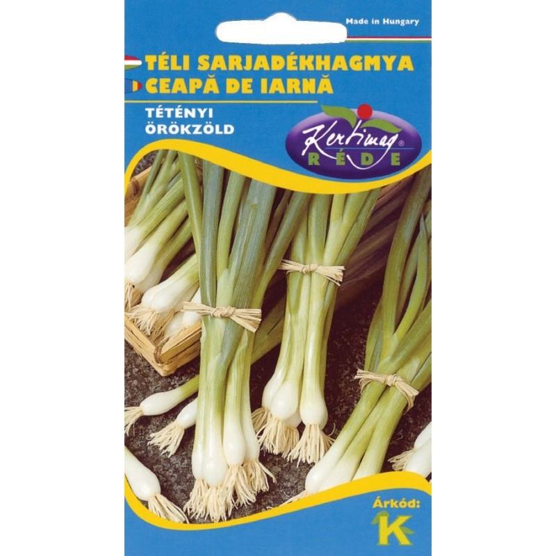Seminte ceapa de iarna Bajkal - KM - Allium fistulosum