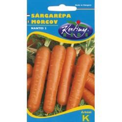 Seminte morcovi Nantes 2 - KM - Daucus carota spp. sativus