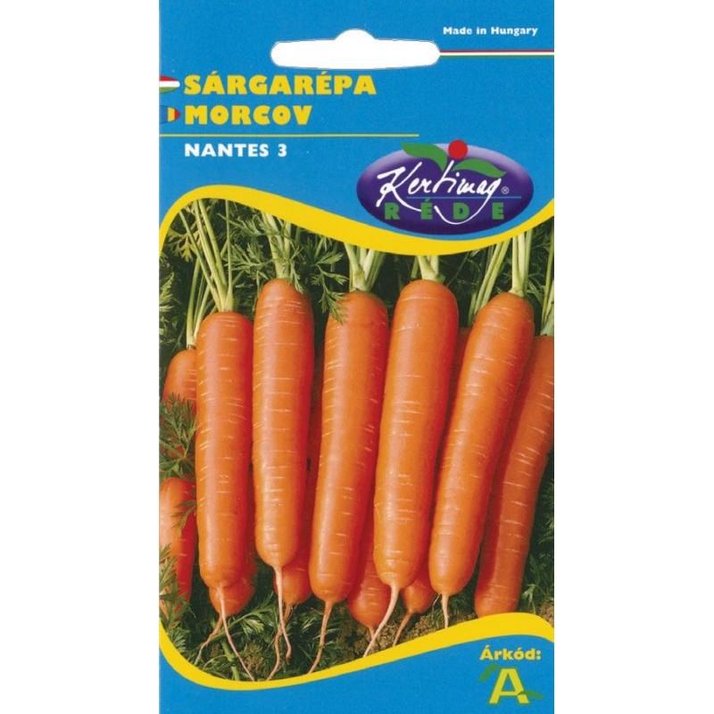 Seminte morcovi Nantes 3 - KM - Daucus carota spp. sativus