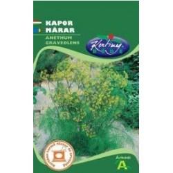 Seminte marar - KM - Anethum graveolens