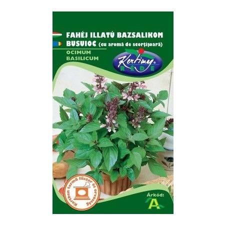 Seminte busuioc cu aroma de scortisoara - KM - Ocimum basilicum