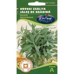 Seminte jales de gradina - KM - Salvia officinalis