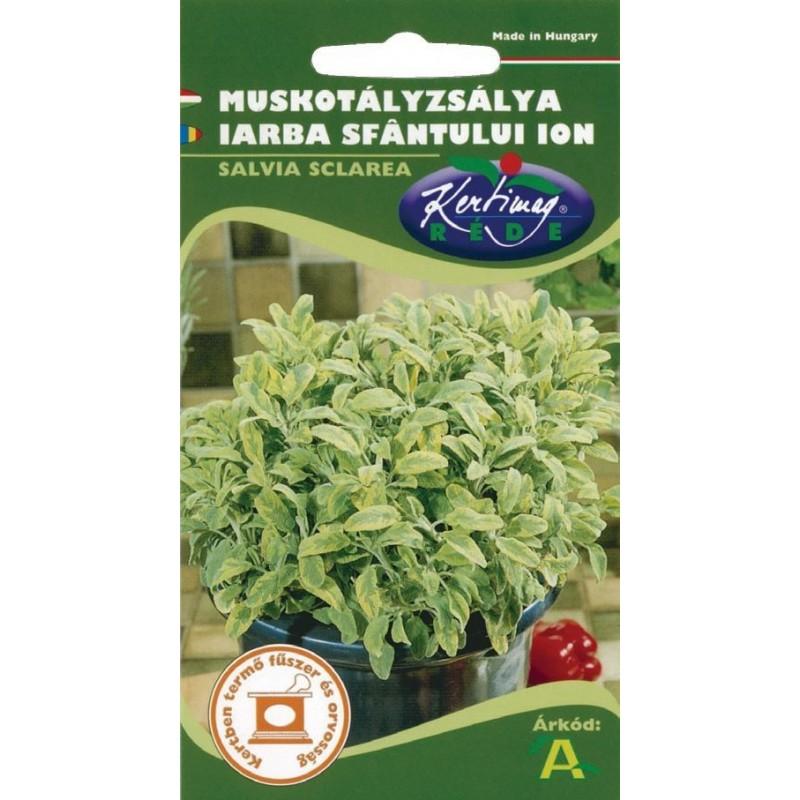 Seminte iarba Sfantului Ion - KM - Salvia sclarea