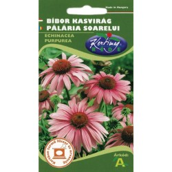 Seminte palaria soarelui - KM - Echinaceea purpurea